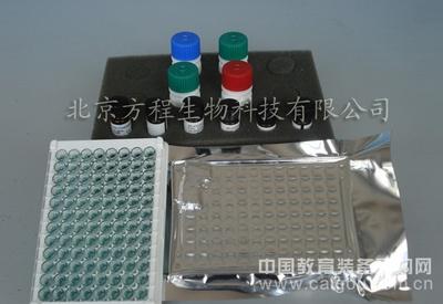 小鼠髓过氧化物酶(MPO)elisa kit
