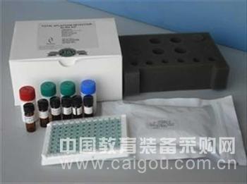 斑马鱼白介素12B(IL12B)ELISA试剂盒