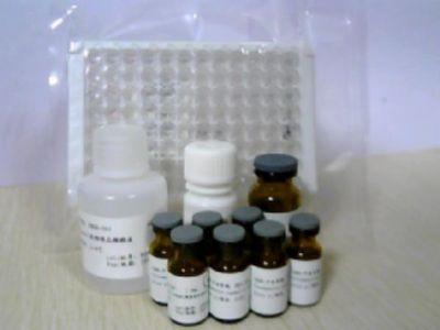 猪皮质酮/肾上腺酮测定试剂盒