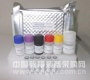 小鼠血小板内皮细胞黏附因子(PECAM-1/sCD31)ELISA试剂盒