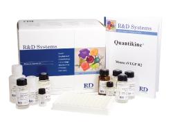 人血小板膜糖蛋白Ⅳ(GP-Ⅳ)ELISA试剂盒