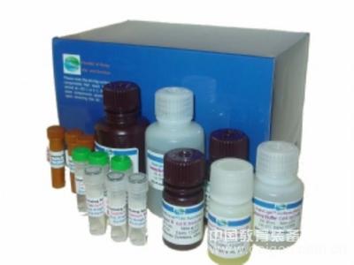 人VMA试剂盒,VMA ELISA KIT,人垂草扁桃酸试剂盒