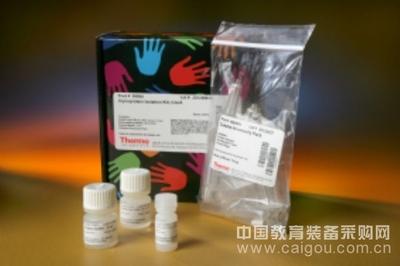 大鼠PDGF-BB试剂盒(血小板衍生生长因子BB)ELISA试剂盒全国质保包邮