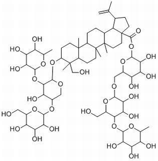 白头翁皂苷E分析标准品 HPLC ≥98%CAS号:366814-43-9