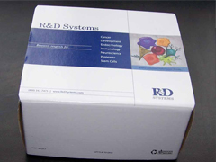 人孕激素(Progesterone)ELISA试剂盒
