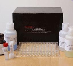 人前列环素(PGI)ELISA Kit