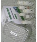 人甲状腺非肽激素抗体(THAA)ELISA试剂盒北京