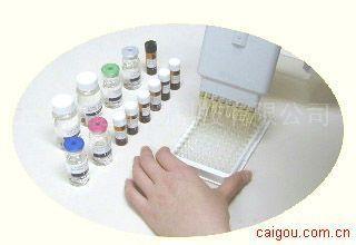 小鼠雌二醇受体ELISA试剂盒