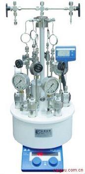 西安微型平行高压反应釜 微型高压反应釜