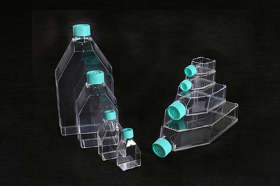 一次性细胞培养瓶,600ML,灭菌,普通型,密封盖