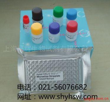 小鼠二肽基肽酶IV(DPP4)  ELISA Kit