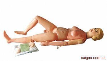 护理人模型(新型多功能护理人实习模型(女性))