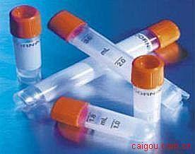钾内向整流通道超家族J成员3(KCNJ3/GIRK1)抗体