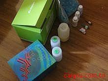 人Elisa-骨胶原交联试剂盒,(Cr)试剂盒