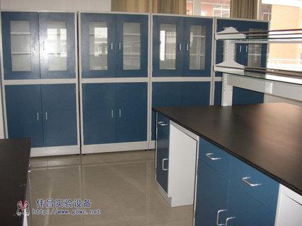 实验室家具/伟昌实验室全钢中央台/资料柜/试剂架