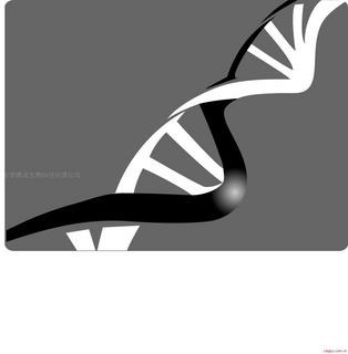 碧波TUNEL细胞凋亡检测试剂盒(显色法)(通用型)