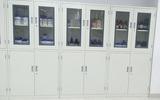 广东实验室试剂药品柜 强酸碱药品存放柜