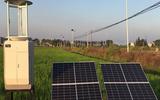 物联网AEEMS农林生态环境监测系统FK-CBD01