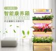 智能生態柜植物空氣凈化器