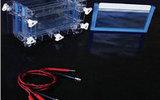 双板垂直电泳槽