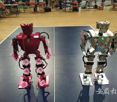 安徽工商职业学院在机器人大赛上获一等奖