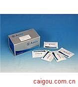 人Renin,肾素Elisa试剂盒