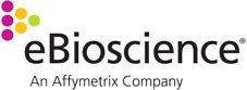 anti-mouse DO11.10 TCR Biotin KJ1-26