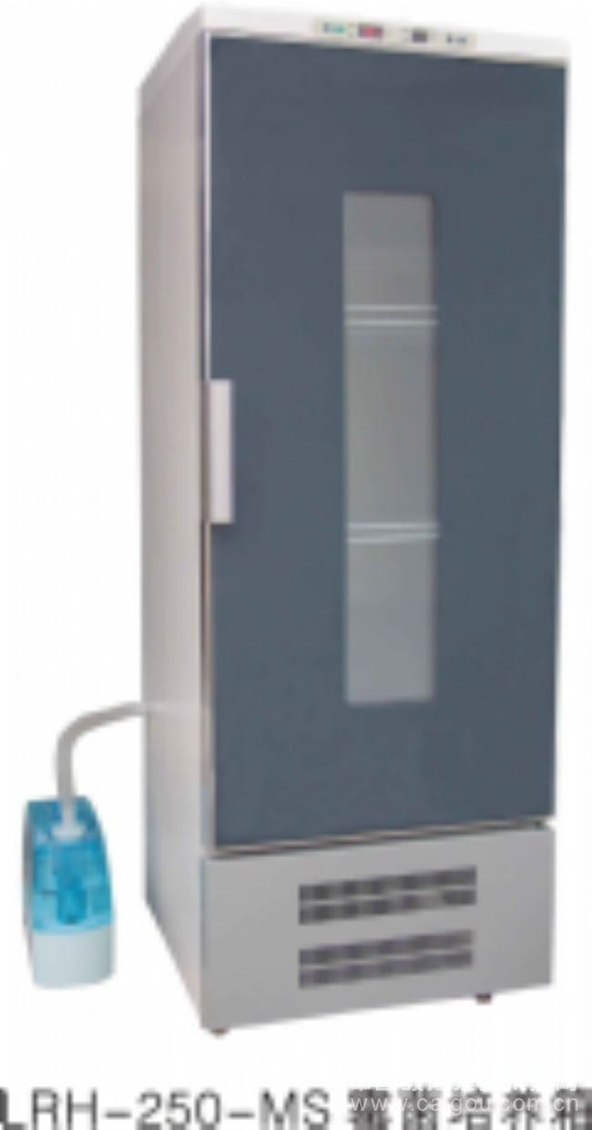 LRH-250-MS霉菌培養箱