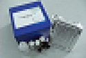 待测人癌胚铁蛋白(CEF)ELISA试剂盒价格