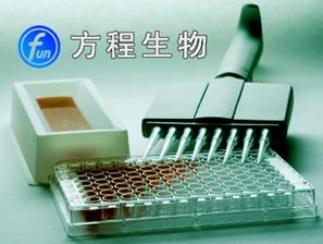 北京植物国产|进口SPFMV elisa价格,植物甘薯羽状斑驳病毒(SPFMV)ELISA KIT酶免代测实验