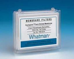 Whatman Cyclopore膜10400206