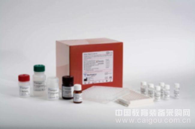 检测CK-MM) ELISA试剂盒小鼠肌酸激酶同工酶MMELISA Kit