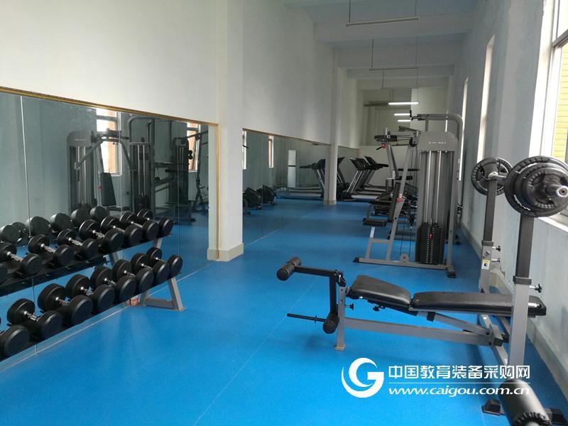 體育健身器械