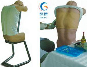 背部(胸部)穿刺訓練模型