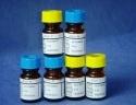 L-谷氨酸盐酸盐/L-氢氯盐酸/L-Glutamic acid HCL