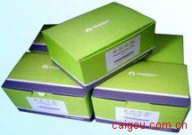 SE Blood DNA Kit