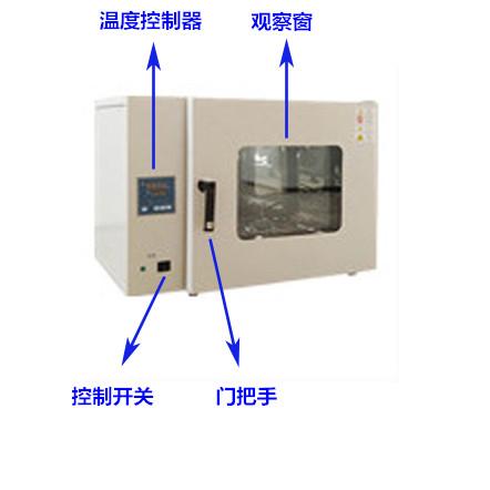 电热恒温鼓风干燥箱(250度)