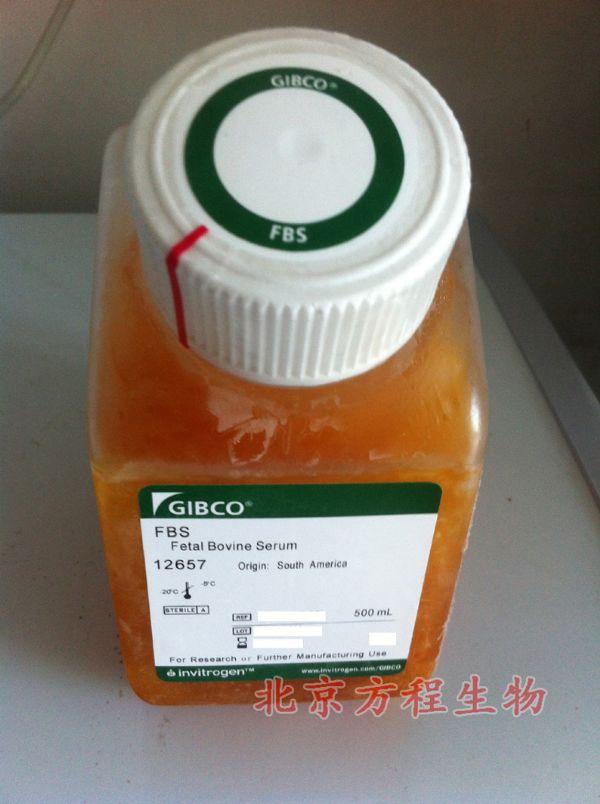人胃蛋白酶(PP)检测/(ELISA)kit试剂盒/免费检测
