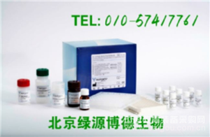 人Toll样受体7 Elisa kit价格,TLR7进口试剂盒说明书