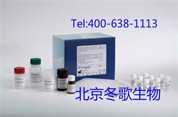 Human高分子量细胞角蛋白,人(CK-HMW)elisa试剂盒